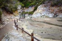 Ajardine a ideia do campo geotérmica em Wai o Tapu perto de Rotorua, Nova Zelândia Imagem de Stock