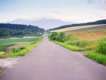 Ajardine a ideia do campo natural e estrada da condução Fotos de Stock