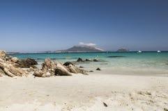 Ajardine a ilha do figaroli em sardinia no verão de Italia Imagem de Stock