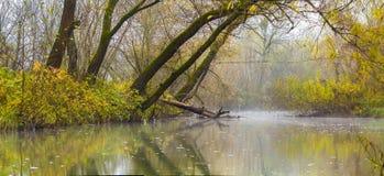 Ajardine a imagem com névoa sobre o rio ou o lago e árvores verdes Foto de Stock Royalty Free