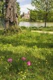 Ajardine a imagem da casa vitoriano velha vista através do lago na soma Fotografia de Stock