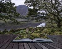 Ajardine a imagem da montanha refletida no lago imóvel no verão mo Imagens de Stock