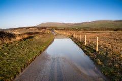 Ajardine a imagem da pista inundada do país na exploração agrícola Fotos de Stock Royalty Free