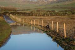 Ajardine a imagem da pista inundada do país na exploração agrícola Fotos de Stock