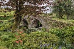 Ajardine a imagem da ponte medieval no ajuste do rio em c inglês Fotografia de Stock Royalty Free
