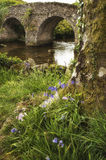 Ajardine a imagem da ponte medieval no ajuste do rio em c inglês Fotografia de Stock