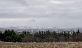 Ajardine a imagem de Islândia com árvores e as montanhas verdes Foto de Stock Royalty Free