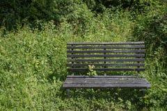 Ajardine a imagem do banco velho na floresta vibrante do verão Fotos de Stock
