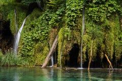 Ajardine a imagem do parque nacional dos lagos Plitvice Foto de Stock