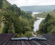 Ajardine a imagem que olha para baixo ao rio que corre através da floresta dentro Fotografia de Stock