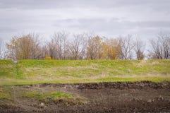 Ajardine, incline-se coberto com a grama verde no outono Fotografia de Stock