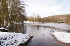 Ajardine invernal, uma floresta com alguma neve Foto de Stock Royalty Free