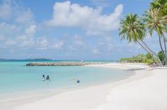 Ajardine la costa del Océano Índico en Maldivas foto de archivo libre de regalías