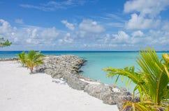 Ajardine la costa del Océano Índico en Maldivas fotos de archivo libres de regalías
