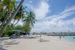 Ajardine la costa del Océano Índico en Maldivas imagenes de archivo
