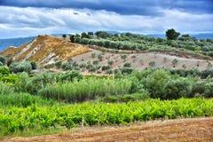 Ajardine la vista de Calabria, en la provincia de Crotone, Italia Foto de archivo libre de regalías