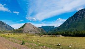 Ajardine la vista de las montañas de Altai, camino entre las montañas, Rusia fotografía de archivo libre de regalías
