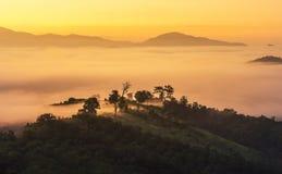Ajardine la vista de la salida del sol en la opinión de alto ángulo con la niebla blanca en madrugada sobre la montaña de la selv Imagenes de archivo