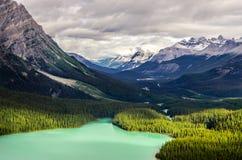 Ajardine la vista del lago y de las montañas, Canadá Peyto Fotografía de archivo libre de regalías