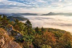 Ajardine a manhã bonita do outono acima do vale profundo da floresta Fotografia de Stock Royalty Free
