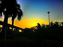 Ajardine a manhã da silhueta do nascer do sol em Banguecoque Tailândia Imagem de Stock