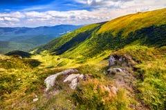 Ajardine montanhas e a grama fresca verde sob o céu azul Imagem de Stock