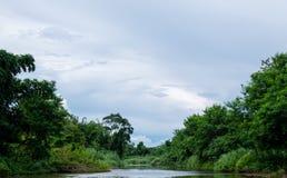 Ajardine a montante do rio do sibilo com o céu azul no countrysid Fotografia de Stock