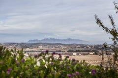 Ajardine na área de Penedes com a montanha de Monserrate no fundo Imagens de Stock