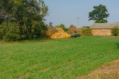 Ajardine na área rural ucraniana no outono adiantado Fotografia de Stock