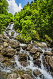 Ajardine na Abkhásia com cume e o rio caucasianos Imagem de Stock Royalty Free