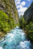 Ajardine na Abkhásia com cume e o rio caucasianos Imagens de Stock