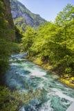 Ajardine na Abkhásia com cume e o rio caucasianos Fotografia de Stock Royalty Free