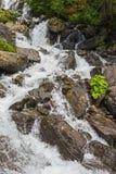 Ajardine na Abkhásia com cume e o rio caucasianos Foto de Stock Royalty Free