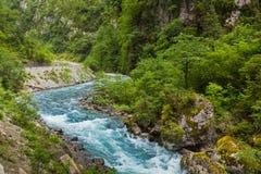 Ajardine na Abkhásia com cume e o rio caucasianos Imagem de Stock