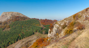 Ajardine na estação do outono perto da montanha de Demerdzhi, Crimeia, Ucrânia Imagens de Stock