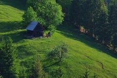 Ajardine na floresta com pouco cabine 8 do log Imagens de Stock Royalty Free