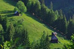 Ajardine na floresta com pouco cabine 9 do log Foto de Stock