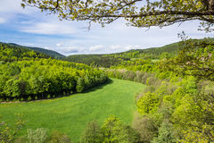 Ajardine na floresta de Thuringian com árvores e prado Imagem de Stock Royalty Free