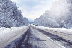 Ajardine na floresta do inverno com região selvagem coberto de neve Imagens de Stock Royalty Free
