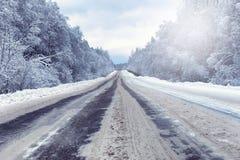 Ajardine na floresta do inverno com região selvagem coberto de neve Fotos de Stock Royalty Free