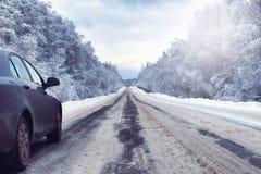 Ajardine na floresta do inverno com região selvagem coberto de neve Imagem de Stock
