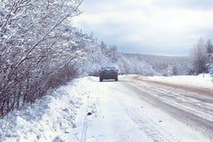 Ajardine na floresta do inverno com região selvagem coberto de neve Fotografia de Stock Royalty Free