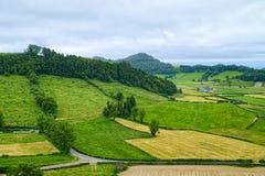 Ajardine na ilha de Miguel do Sao, Açores, Portugal Foto de Stock