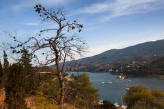 Ajardine na ilha de Poros, Mar Egeu Fotos de Stock