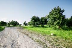 Ajardine na natureza do céu com nebuloso e da estrada através de uma estrada de floresta sempre-verde que passa a montanha Imagens de Stock Royalty Free
