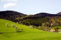 Ajardine na Preto-floresta, Alemanha, Glottertal Fotografia de Stock