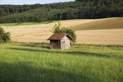 Ajardine na província alemão, vertente só no meio da GR Foto de Stock