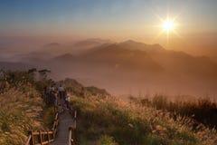 Ajardine nas montanhas Imagens de Stock Royalty Free