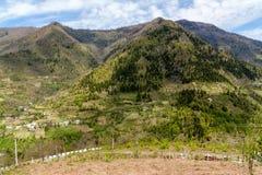 Ajardine nas montanhas, Ajara, Geórgia Imagens de Stock Royalty Free