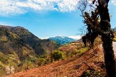 Ajardine nas montanhas, Ajara, Geórgia Foto de Stock